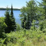 trout lake boulder junction wisconsin