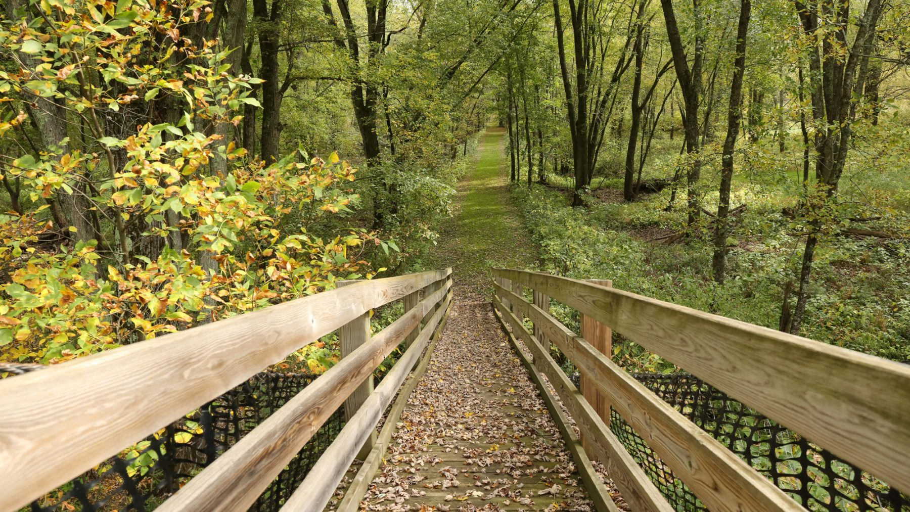 fall hiking rusk county wisconsin