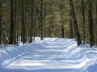 Black River Country Snowmobile Trail