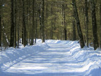 Black River Country Snowmobile Trail