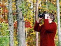 Birdwatching in the Autumn